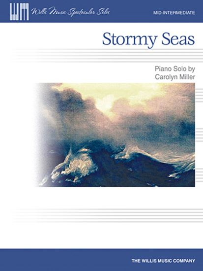 Picture of Stormy Seas