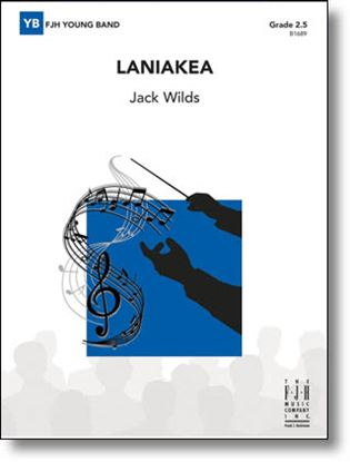 Picture of Laniakea